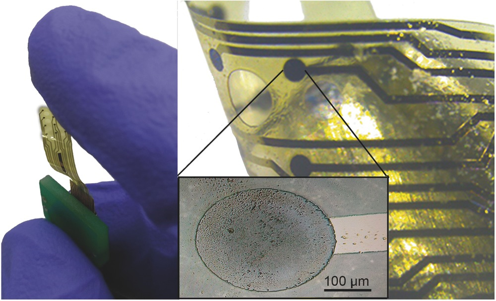 Representative image of a 12‐electrode glassy carbon array on polyimide (PI) substrate (left); Detail showing one electrode perfectly embedded into the PI substrate (right).