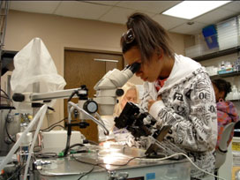 Student looking through a microscope.
