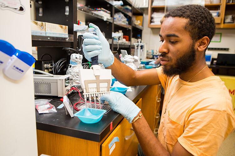 Jesse Woodbury, REU program participant, working in the lab
